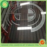 El espejo del SUS 304 grabó al agua fuerte la hoja de acero inoxidable para la venta al por mayor de la decoración de las piezas del elevador