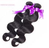 Trame brésilienne faite à la machine de cheveux de cheveux de Remy de vague de corps