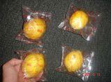 Machine à emballer automatique de vente chaude de bonne qualité de fruit de palier