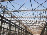 I montaggi del gruppo di lavoro della struttura d'acciaio dalla fabbrica della Cina fanno del telaio d'acciaio