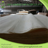 Bons Price e Quality Bleached 0.3mm Poplar Veneer From Linyi