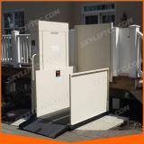 3m China Lieferanten-elektrischer vertikaler Plattform-Aufzug für Hauptgebrauch