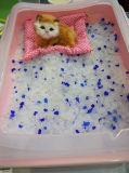 Huminrich 공 모양 애완 동물 모래 실리카 젤 고양이 배설용상자 고양이 모래
