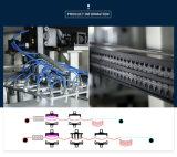 Volledig Automatische Machine Thermoforming voor de Plastic Dienbladen van het Ei