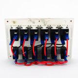 AUTO-Boots-Schalter-Panel 6 Gruppe-blaues LED weißes Marine