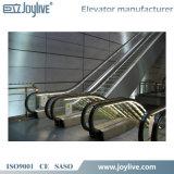 Escalera móvil comercial usada para la venta