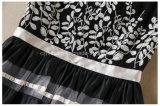 Falda bordada del `S de las mujeres de Restonic