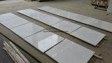 Плитка/сляб Китая чисто белые мраморный