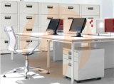 Casellario verticale dell'ufficio con la maniglia di plastica nera