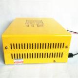 Intelligentes 12V/24V 200ah Ladegerät mit LED-Bildschirmanzeige