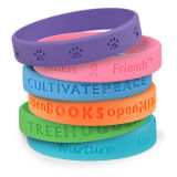 Изготовленный на заказ персонализированный празднеством Wristband силикона для промотирований