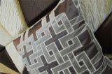 Hoofdkussen van het Fluweel van de Manier van het Kussen van het borduurwerk het Decoratieve (EDM0282)