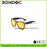 Óculos de sol elegantes de venda quentes do Tac