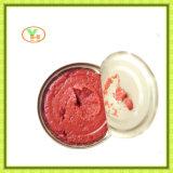 In Büchsen konservierte Tomatenkonzentrat-Hersteller-gesunde in Büchsen konservierte Nahrung