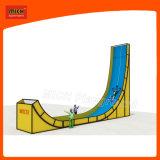 Campo de jogos interno do parque de diversões do campo de jogos de Mich