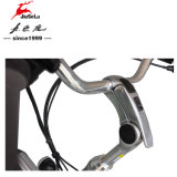 高品質700cのAlの合金フレーム都市多色刷りのE自転車(JSL036B-6)