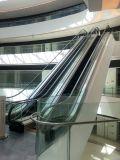 Barandilla segura resistente de la escalera móvil al aire libre de interior de la escalera móvil
