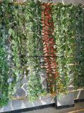 Viti artificiali dell'EDERA della decorazione di attaccatura di parete del rifornimento della fabbrica