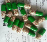 Heißer Verkaufs-natürliche maximale abnehmenkapsel-Gewicht-Verlust-Diät-Pillen