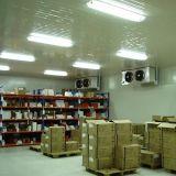 冷蔵室/実験室部屋/Pharmarcyの貯蔵室をきれいにしなさい