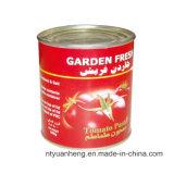 De hete Ingeblikte Tomaat Paste&#160 van de Verkoop 2.2kg;