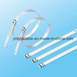 Qualitäts-Strichleiter-multi Widerhaken-Verschluss-Edelstahl-Kabelbinder