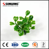 Comitato artificiale Anti-UV resistente UV del Boxwood con SGS/Ce