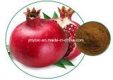 Кож-Забеливать естественную выдержку семени Pomegranate, Ellagic кислота 40%~90%