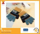 Particolored теплые перчатки мальчика жаккарда