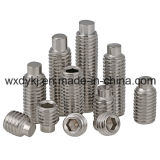 Edelstahl 304 Hexagon Socket Setscrew mit Dog Point Factory From China BS 2470