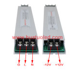 12V100W ultra dünner LED Fahrer mit PWM Funktion (HTB Serires)