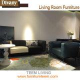 Teem o jogo de couro moderno do sofá do projeto da vida