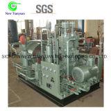 Тип мотор малого масштаба вертикальный управляя компрессором природного газа CNG