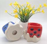 かわいいウサギのバニーの陶磁器の水気が多い植木鉢の庭の磁器