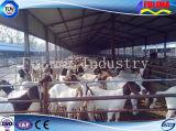 Costruzione prefabbricata d'agricoltura d'acciaio del pollo del pollame liberata di/Camera