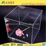 最上質のアクリルの立方体の表示(AM-C064)