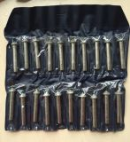 алмазные резцы 20PCS гальванизировали диамант установленное Burs (JL-DMPS20)