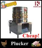 [س] يوافق رخيصة آليّة دجاجة تنظيف آلة ([كب-80])