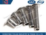 GB873 Klinknagels van de Paddestoel van het roestvrij staal de Hoofd Semi-Tubular