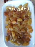 De gouden Sorteerder van de Kleur van Rozijnen voor de Productie van Rozijnen in Iran