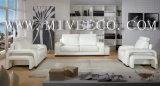Sofa en cuir (TB-32#)