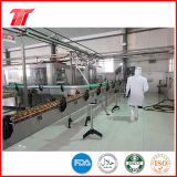 goma de tomate conservada sana de la marca de fábrica de 400g Vego