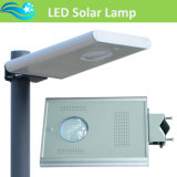 15W Integrated LED Solar Street Light con 5 Years Warranty