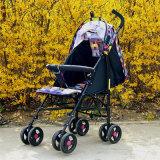 Einfacher neuer Baby-Spaziergänger des Entwurfs-2016