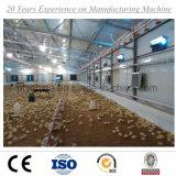 2017 Galpões para fazenda avícola