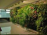 녹색 벽 구 Wall05182835의 고품질 인공적인 플랜트 그리고 꽃