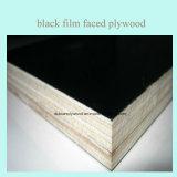 Negro/madera contrachapada marina de Brown/madera contrachapada Shuttering de la construcción de la madera contrachapada