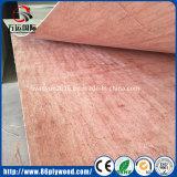 Madera contrachapada de caoba de Okoume de la paleta de los muebles del grado de la base de madera del álamo