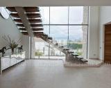 Escadaria de vidro de aço da mono longarina & escadaria de vidro Cantilever de flutuação das escadas