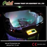 Nieuwe Stijl Acryl OpenluchtTriangle Hot Tub SPA